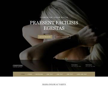 Chevesic Free Website Template