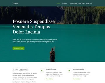 Kiraric Free Website Template
