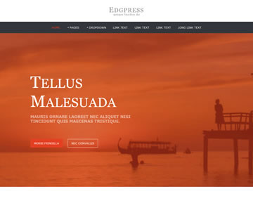 Edgpress Free Website Template