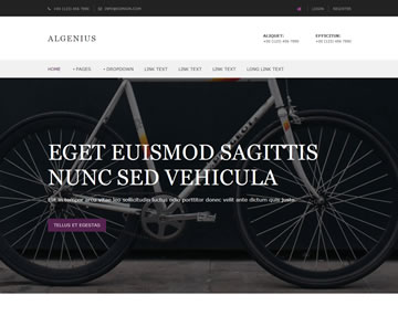 Algenius Free Website Template