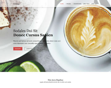 Gomag Free Website Template