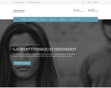 Dodmond Free Website Template