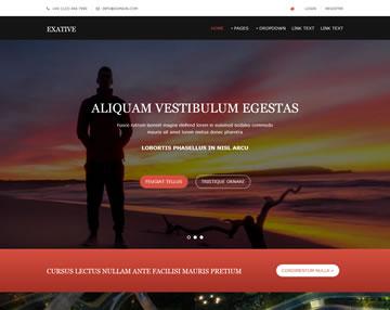 Exative Free Website