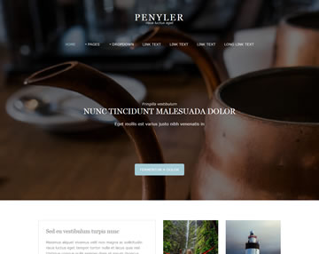 Penyler Free Website