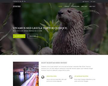 Etours Free Website