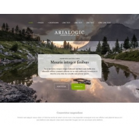 Arialogic Free Website