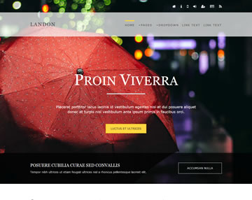 Landon Free Website