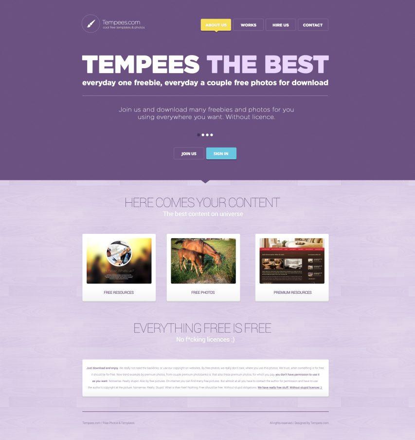 Flat Purple Tone Landing Page
