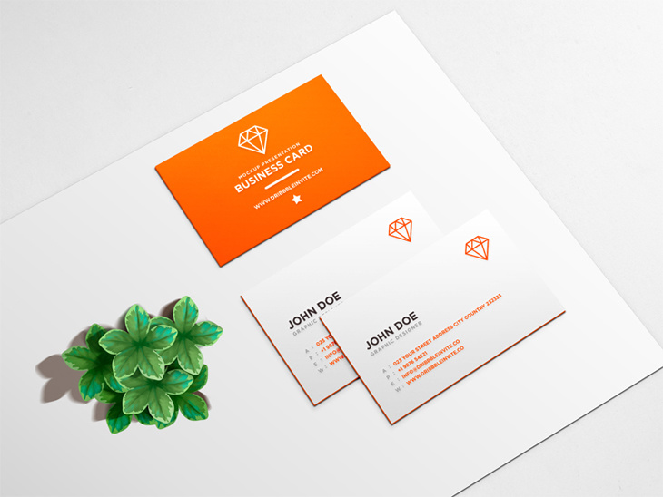 Beautiful Business Card Mockup PSD