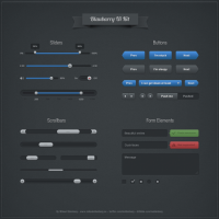 Blaubarry Interface By Mikael Eidenberg