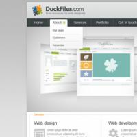 Corporate Porftfolio Website Template Free PSD
