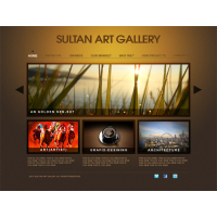 Sultan Art Gallery By Faizan Haider