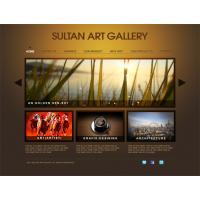 Sultan Art Gallery By Faizan Haider