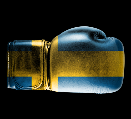Bboxing Gloves - Flag