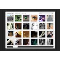 Web Temp Style Show Images