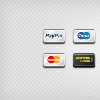 8 Popular Payment Icons