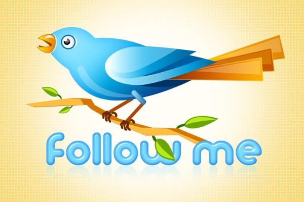 Twitter Bird PSD Icon