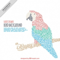 Ornamental Parrot Background