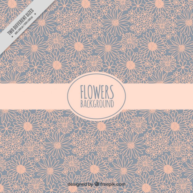 Sketches Daisies Vintage Background