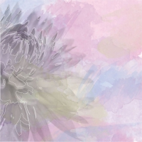 Abstract Flower Background On Pastel Color