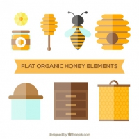 Elements Of Honey In Flat Design