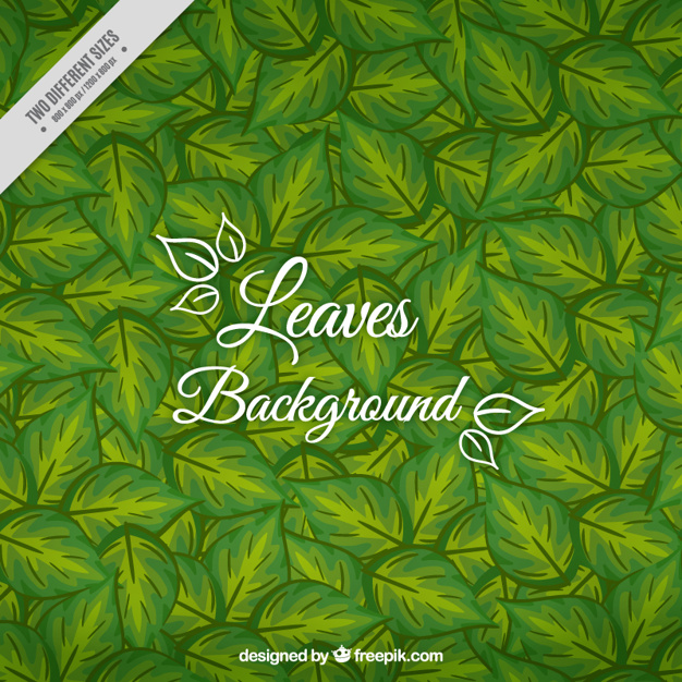Hand Painted Leaves Green Background