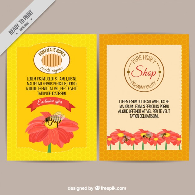 Coloured Honey Shop Brochure