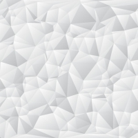 White Polygonal Shapes Background