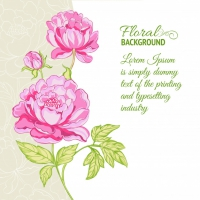 Pink Peonies Background